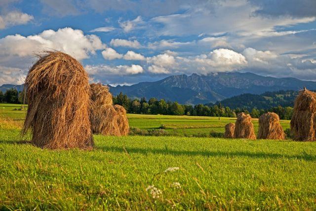Twoja najlepsza trasa turystyczna w Tatrach?