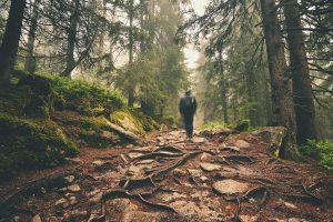 wczasy dla seniora w górach
